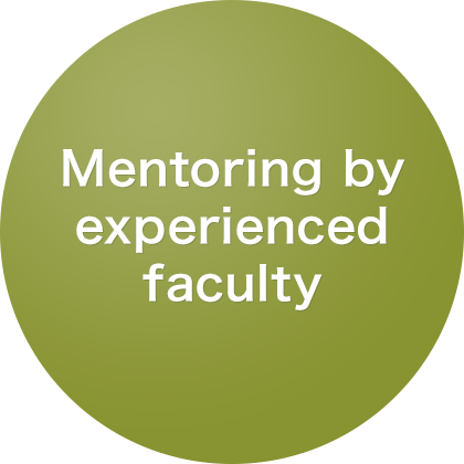 Full mentoring by experienced faculty